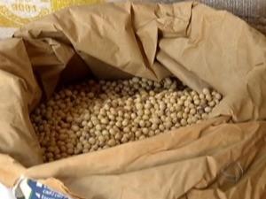 Alta na saca da soja estimula aumento no preço do grão (Foto: Reprodução/TV Morena)