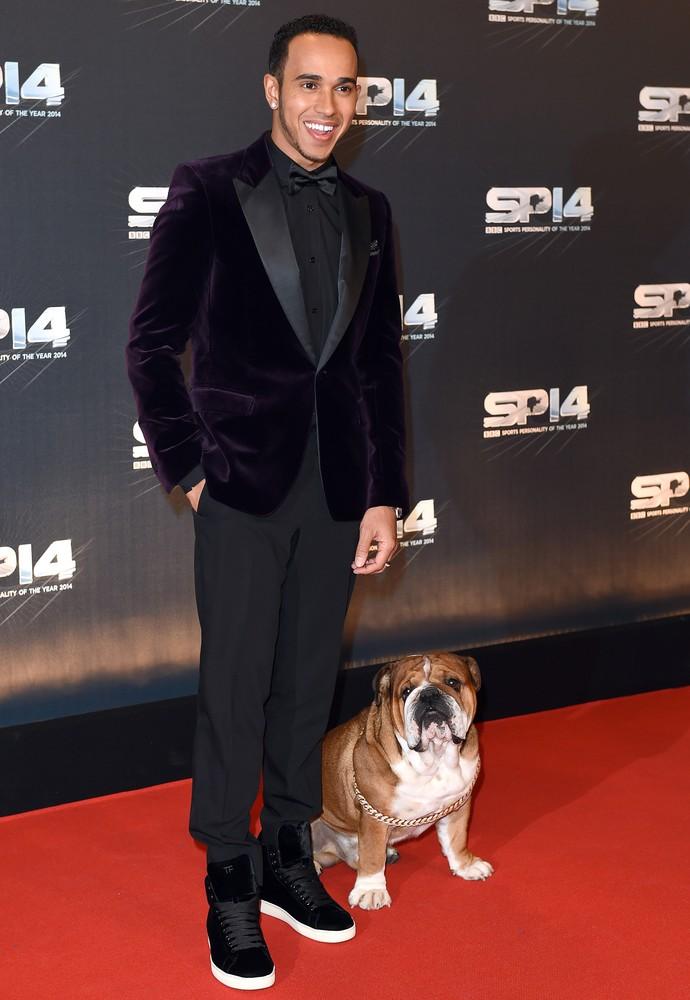 cachorro, Lewis Hamilton, F1, Fórmula 1 (Foto: AFP)