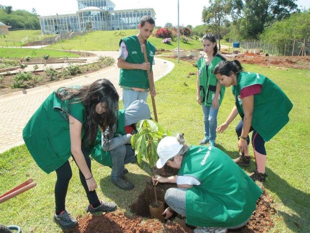 Ação está sendo realizada sob organização da Secretaria do Meio Ambiente em Sorocaba (Foto: Prefeitura de Sorocaba)