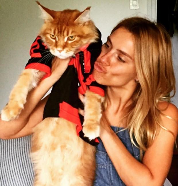 Carolina Dieckmann e seu gatinho de estimação, Kibe (Foto: Reprodução/Instagram)