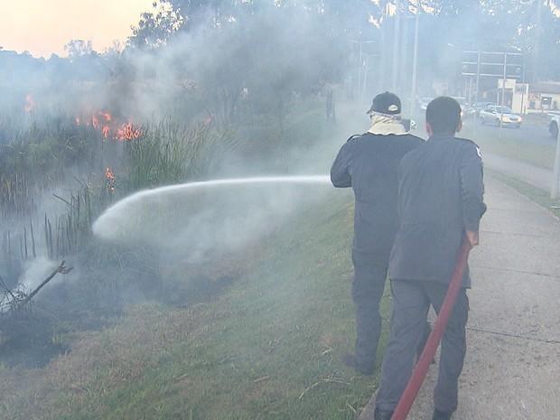 Bombeiros combatem incêndio na orla da Lagoa da Pampulha, em BH (Foto: Reprodução/TV Globo)