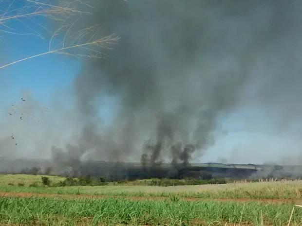 Incêndio em Fernandópolis (Foto: Evandro dos Reis/TEM Você)