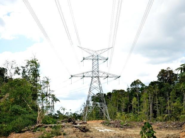 Linhão de Tucuruí pode ficar pronto ainda no primeiro semestre de 2013, diz Governo (Foto: Divulgação)