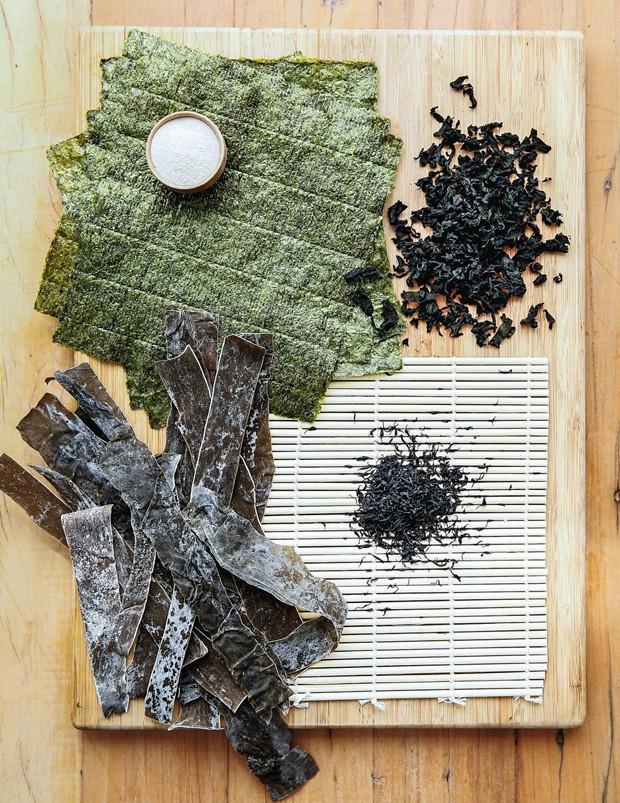 Diferentes tipos de algas (Foto: Amanda Areias / Editora Globo)