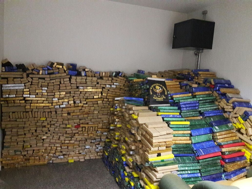 Tabletes de maconha apreendidos em Itaquiraí, MS (Foto: DOF/ Divulgação)