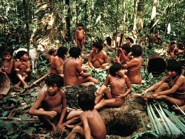 Fotos de arquivo da tribo ianomâmi feitas por organização de direitos dos indígenas (Foto: ONG Survival International)