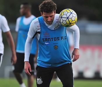 Elano, Santos (Foto: Ivan Storti/Santos FC)