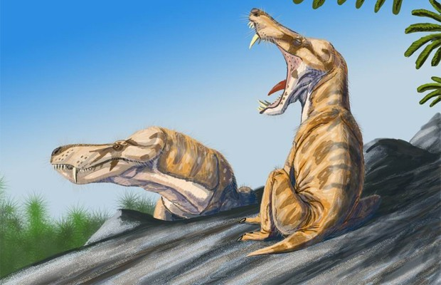Ilustração mostra como seria espécie da ordem 'Therapsida', com características similares aos mamíferos; espécie foi extinta no Triássico (Foto: Mitrchel/Wikicommons)