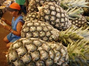 Abacaxi, laranja e mamãe apresentaram queda no mês de agosto.  (Foto: Fernando Araújo/O Liberal)