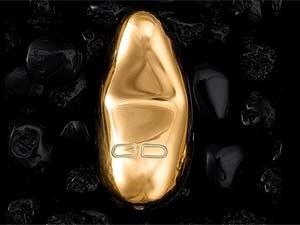 Imagem do vibrador banhado a ouro roubado de uma sex shop de Brasília na noite desta quarta-feira (30) (Foto: Reprodução)