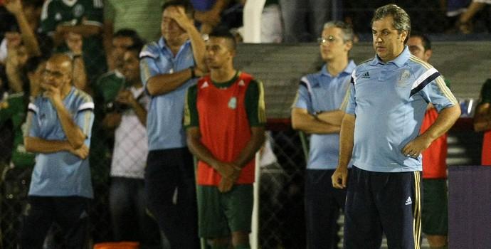 Gilson Kleina Palmeiras x Vilhena-RO (Foto: Cesar Greco / Ag. Estado)