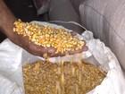 Quarto leilão de Pepro de milho oferta 1,75 milhão de toneladas
