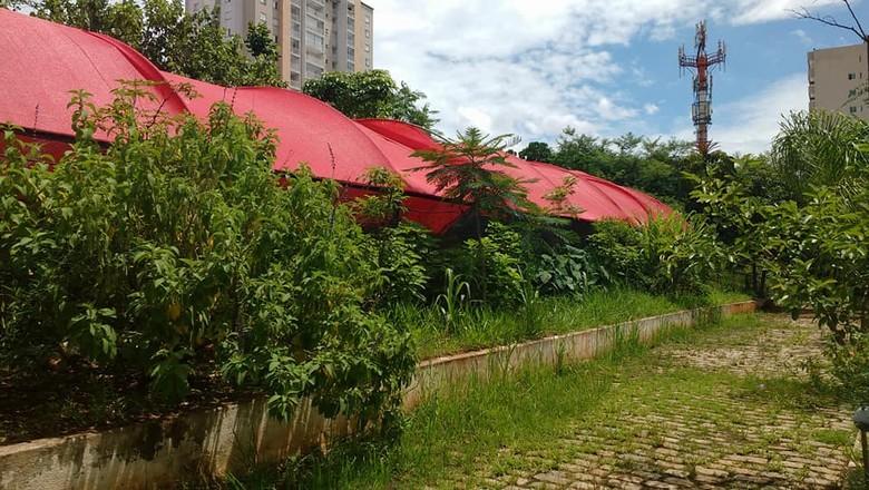 Horta das Flores (Foto: Divulgação/Facebook)