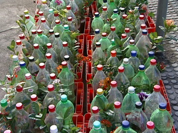 Vasos de flores são distribuídos em Dia Mundial do Meio Ambiente (Foto: Reprodução/TV Gazeta)