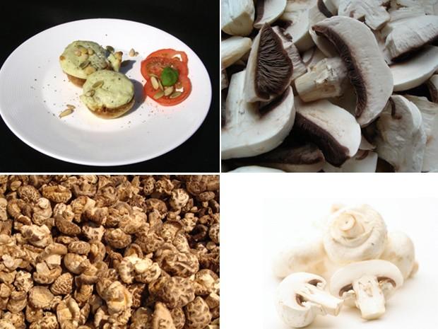 Conheça os diferentes tipos de cogumelos usados na culinária (Foto: Banco de Imagens)