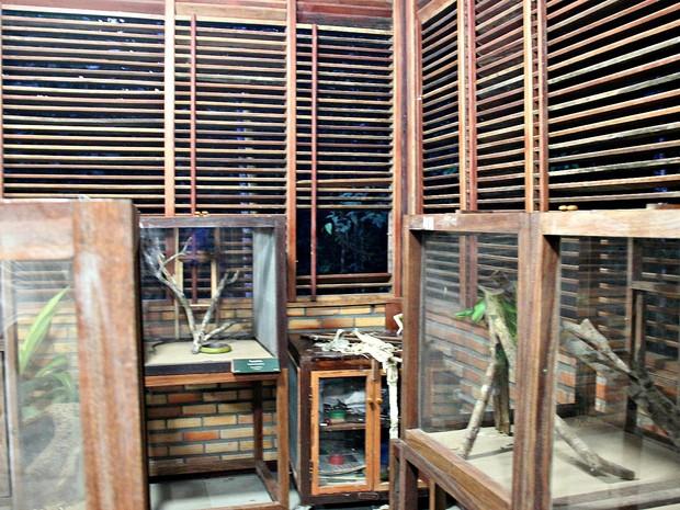 Bandidos quebraram janela do laboratório para pegar animal  (Foto: Ísis Capistrano/ G1 AM)