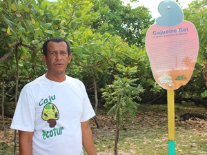 Guia turístico José Felix é outro que torce pelo cajueiro piauiense (Foto: Gilcilene Araújo/G1)