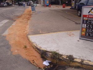 Diesel vazou até a rede (Foto: Zana Ferreira/G1)