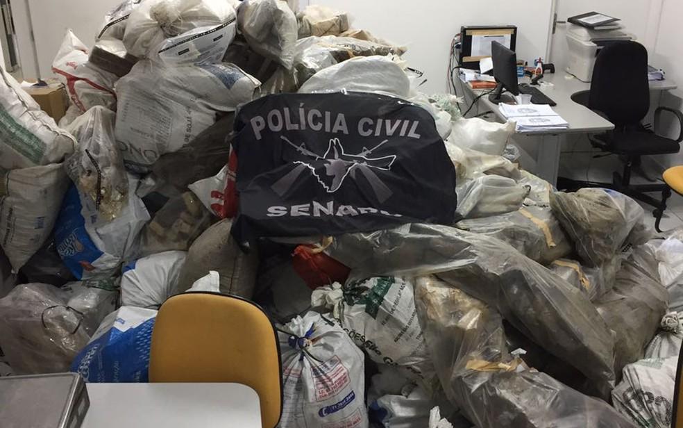 As drogas foram apreendidas em diferentes ações da Senarc (Foto: Senarc / Divulgação)