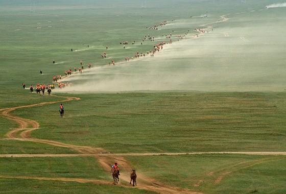 As corridas de cavalo nas estepes ao redor da capital Ulaanbaaar fazem parte dos festejos do Naadam  (Foto: Haroldo Castro)