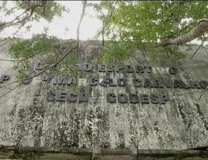 Ded abandono (Foto: Reprodução/Inter TV Cabugi)