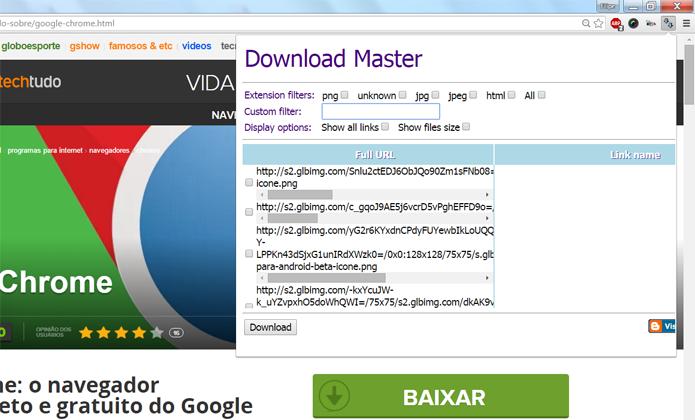 Download Master permite que você baixe, de uma só vez, todos os arquivos possíveis de uma única página da Internet (Foto: Reprodução/Filipe Garrett)
