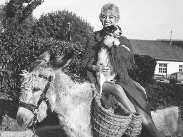 Celebridades e seus pets (Foto: Edward Quinn / divulgação)