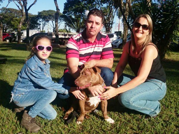 ONG Depam tem aproximadamente 15 animais, entre cães e gatos, para adoção (Foto: Renata Marconi/G1)