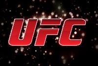 Confira o site oficial da maior organização de MMA do mundo! (Editoria de Arte)