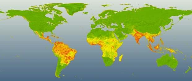 Pontos em vermelho mostram onde há maior incidência de dengue (Foto: Jane Messina/Nature/Divulgação)