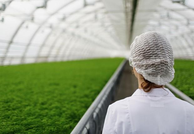 Sustentabilidade ; negócio verde ; desenvolvimento sustentável ; empresa sustentável ; negócio sustentável ; indústria química ;  (Foto: Shutterstock)