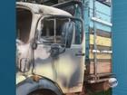 Caminhão para furtar bois atola e ladrões desistem de crime em SP