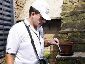 Agente faz o controle de criadouros do mosquito da dengue (Foto: Divulgação/Prefeitura de Araras)