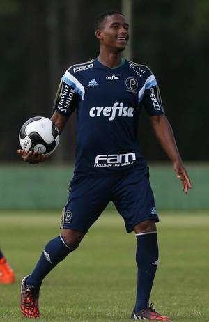 Palmeiras Matheus Sales (Foto: Cesar Greco/Ag Palmeiras/Divulgação)