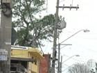 Furto de cabos prejudica moradores (Reprodução/ TV Diário)