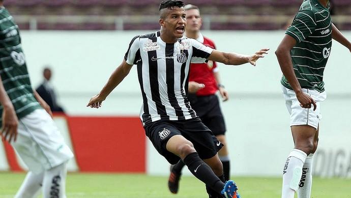 Santos sub-20 (Foto: Pedro Ernesto Guerra Azevedo / Santos FC)