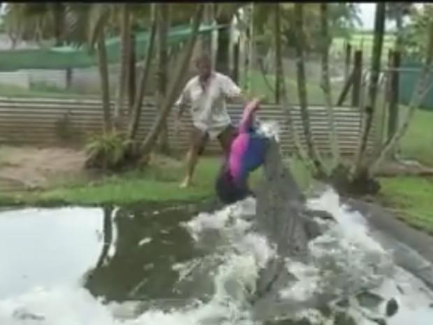 Corey Wild usou manequim para mostrar poder de ataque de grande crocodilo na Austrália (Foto: Reprodução/Facebook/Corey Wild)