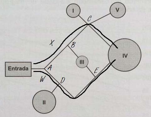 Matematica 4 (Foto: Poliedro)