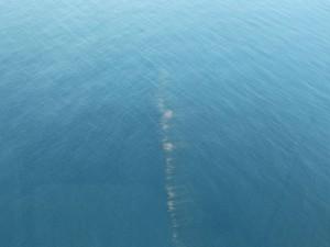Imagem do governo mostra lama suspeita em mar de Abrolhos, na Bahia (Foto: Manu Dias/ GOVBA)
