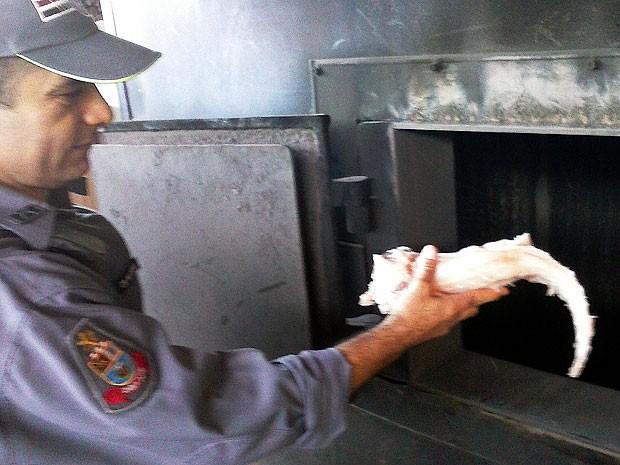 Carne de jacaré foi considerada imprópria para o consumo e foi incinerada (Foto: Polícia Ambiental/Divulgação)