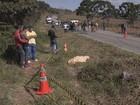 Romeiros morrem atropelados por caminhão em Bom Repouso, MG