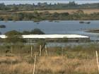 Cheia do Rio Uruguai devasta pastagens e lavouras no RS
