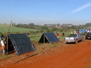 Famílias do MST invadem área de Usina Maringá em Araraquara (Foto: Ronnei Nicoletti/ EPTV)
