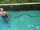 Australiano 'brinca' com cobra de 3 metros em piscina na Indonésia