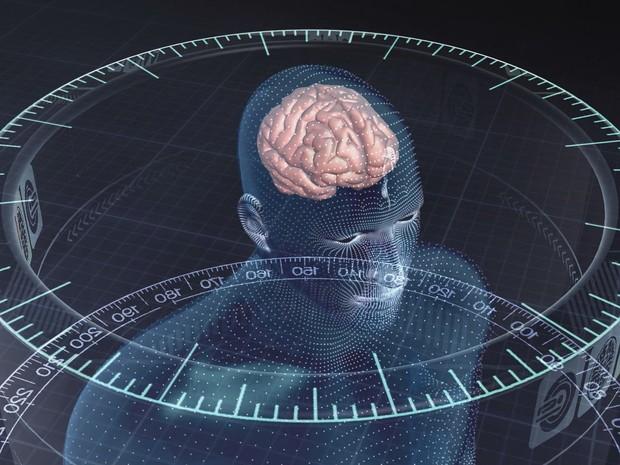 Células do cérebro ganham movimento e luz após alfabetização (Grep) (Foto: Globo Repórter)
