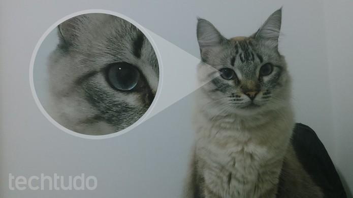 Foto feita com o Xperia T2 Ultra Dual em ambiente interno (Foto: Isadora Díaz/TechTudo)