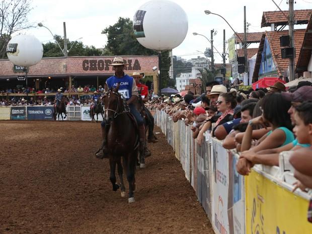 Exposição de cavalo mangalarga marchador (Foto: Renato Aguilar/ABCCMM/Divulgação)