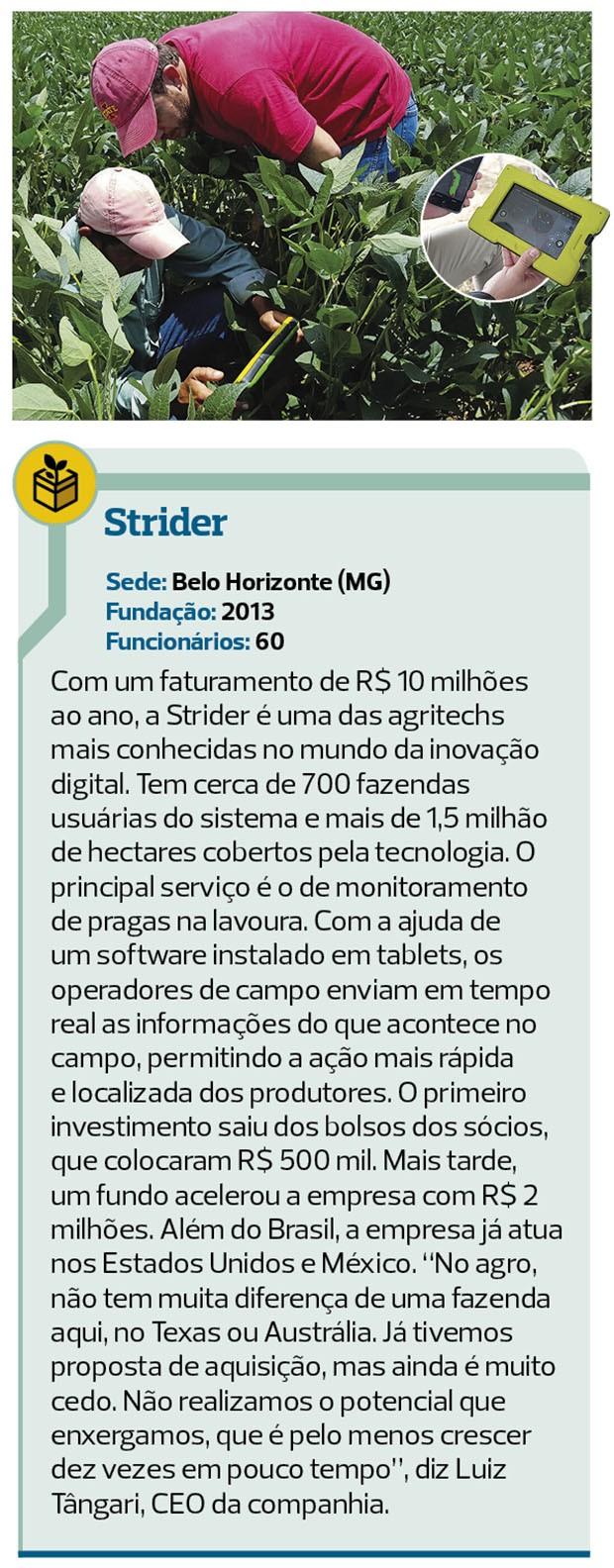 startup-strider (Foto: globo rural)