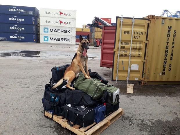 material estava dentro de malas em container de auto-peças (Foto: PM/Divulgação)