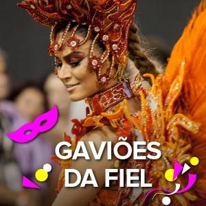 selo Gaviões (Foto: Arte/G1)
